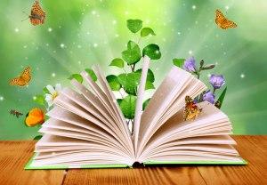 Libro_bibliografía