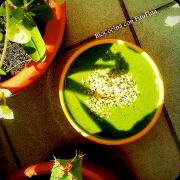 batido-verde-picanton