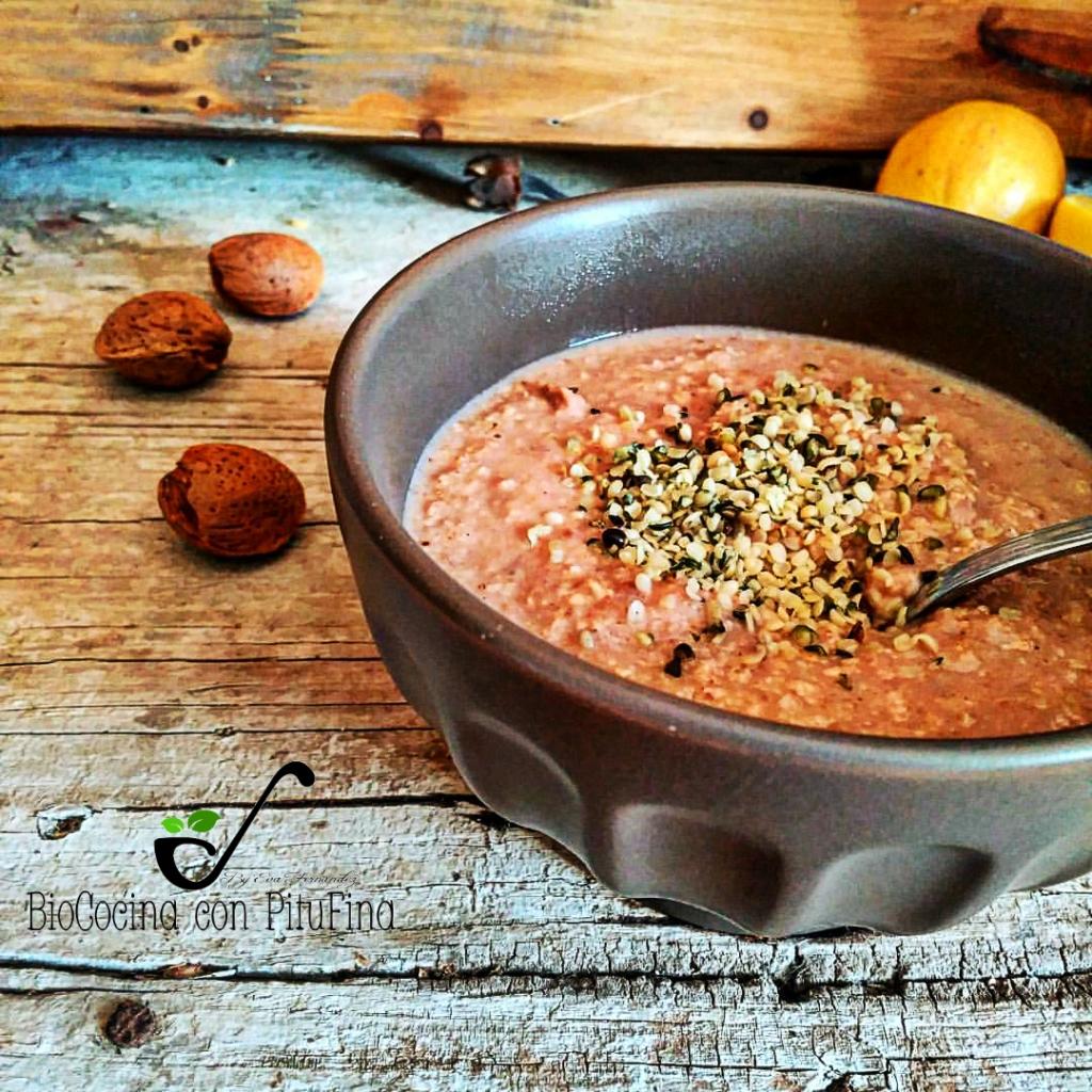 gachas-de-avena-chocolateada